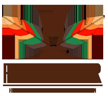 Logo FELER transparente